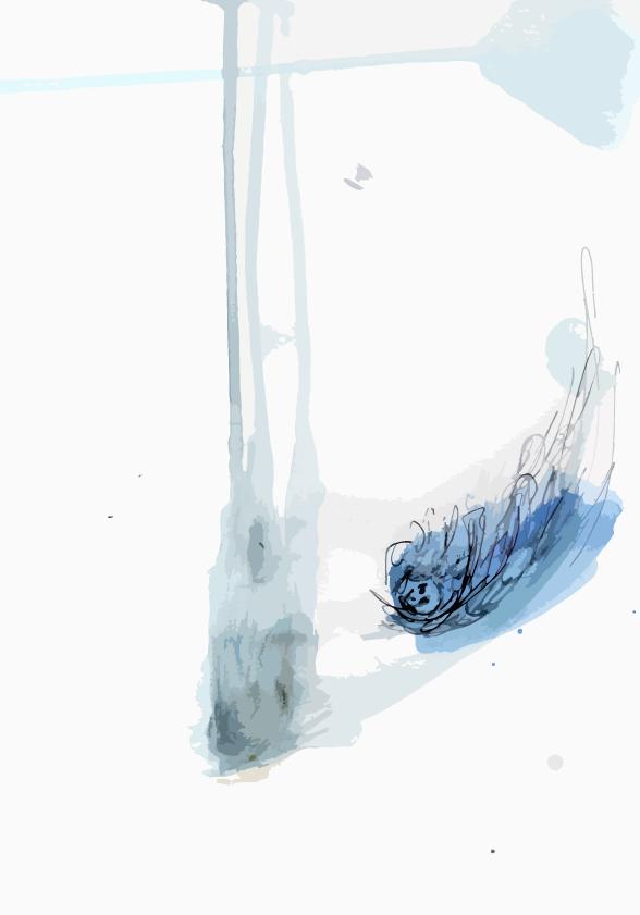 A vol d'oiseau - brouillon n°510 456